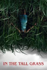 In the Tall Grass 2019 พงหลอนมรณะ