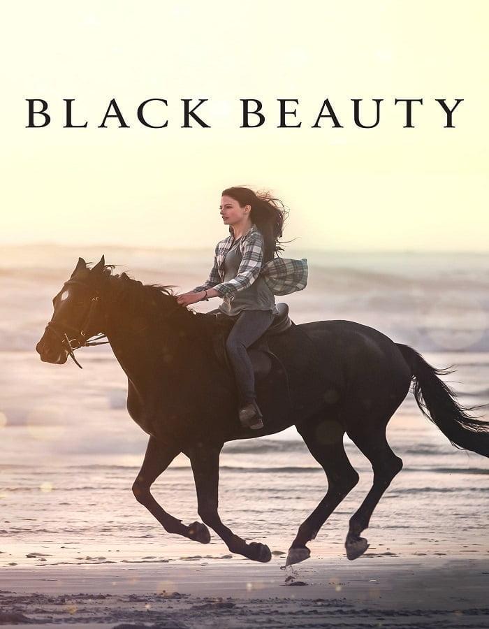 Black Beauty 2020 แบล็คบิวตี้